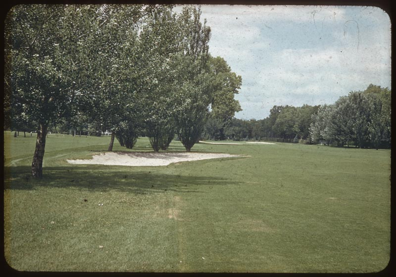 Tree Clump makes trap unnecessary #2 F