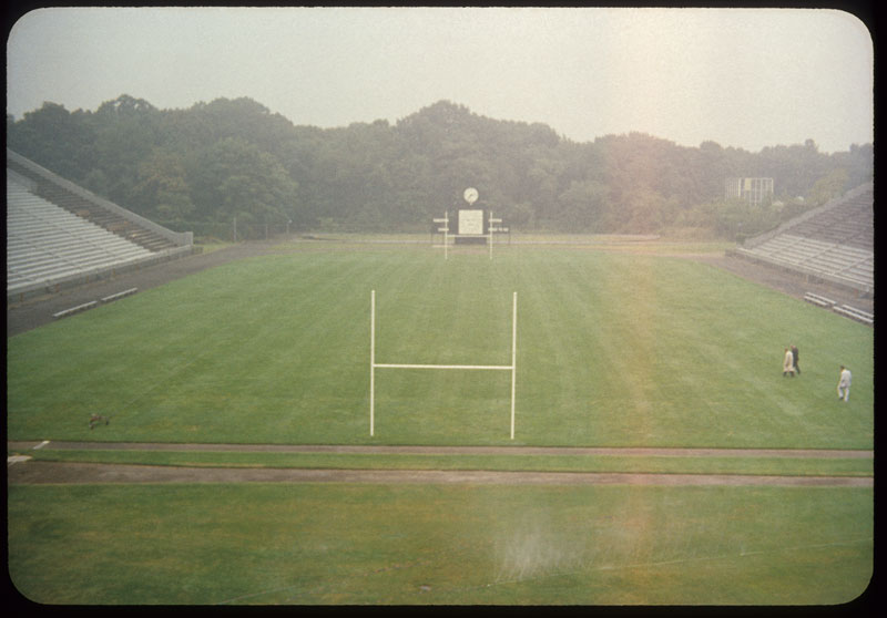 Field from stands