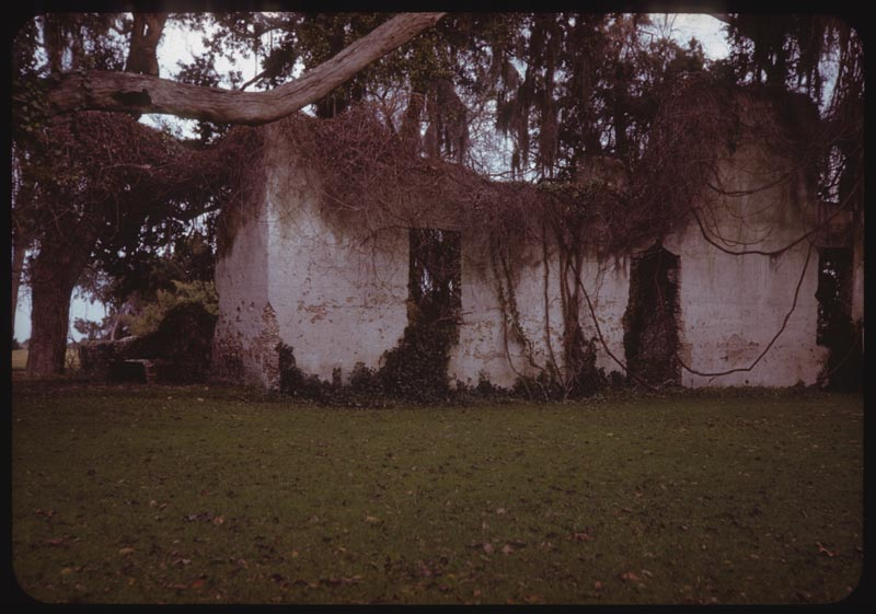 Homestead Rains Retreat Plantation