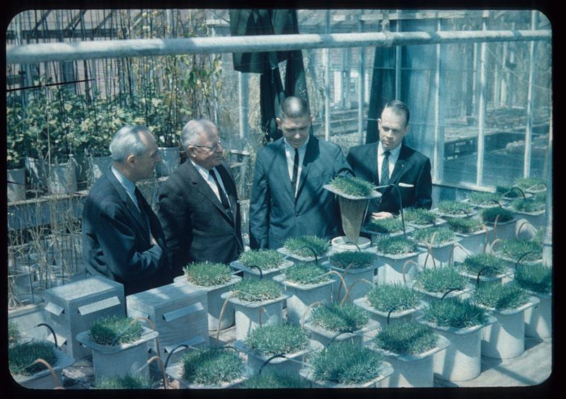 Pierre, Noer, Fuchs, Roberts inspect solution culture