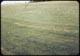 Thumbnail: Milars. rough foreground - no treat behind