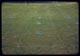 Thumbnail: Milars. Series 3-D-200-300-400