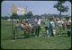 Thumbnail: Zaun Donkey Fla. Trade Show