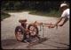 Thumbnail: Delmonte on Overgreen rakes trap