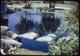 Thumbnail: Lake Dye Treated Pond