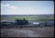 Thumbnail: Brockmeier Sod Farm