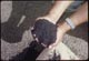 Thumbnail: Loamite for P. G.