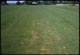 Thumbnail: Damage from large Verticut