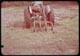 Thumbnail: Farley Bermuda Harvester