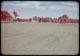 Thumbnail: St. Augustine, & Bermuda F