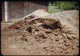 Thumbnail: Rotted sawdust compost