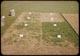 Thumbnail: Stolon Planting Demostration
