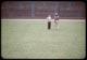Thumbnail: Athletic Field   Van Garden