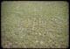Thumbnail: Alta in Aerifier holes in Stadium