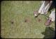 Thumbnail: Hole & Drill close-up