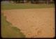 Thumbnail: Soil Prep. - Rototilled Nursery