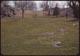 Thumbnail: Seepage Injury to lawn