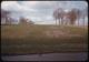 Thumbnail: Crabgrass damaged fairway