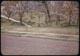 Thumbnail: Crabgrass injury to lawn