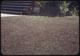Thumbnail: Solid dead crabgrass lawn