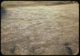 Thumbnail: Bermuda recovery slow in drain swales