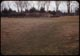 Thumbnail: Snow Mold grass under snow stayed G