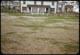 Thumbnail: Winter Kill on Lawn