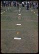 Thumbnail: Plot Series Ammonium Sulfate Foreground