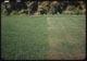 Thumbnail: Milars. app. 9-10-41 effect on plantain 8#/1000