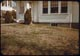 Thumbnail: June Beetle injury---fall before